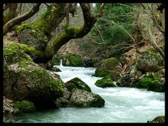 This photo from Ahaia, Peloponnesus is titled 'River'. Greece Holiday, Family Destinations, Greek Islands, Cyprus, Athens, Waterfall, Places To Visit, Traveling, Europe