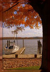 Autumn, water and a sailboat. What isn't to like?