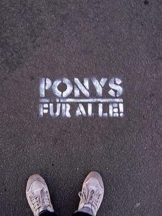 Ponys für alle