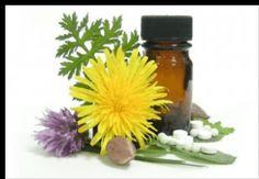 80 Uses for Tea Tree Oil