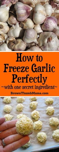 How to freeze garlic for later use