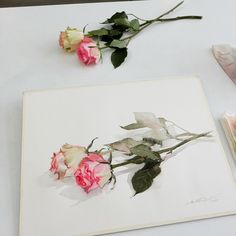 My demonstration at Masterclass in St.Petersburg, organized by @art.holidays 18.02.2017 #watercolor #masterclass #Russia #art #artist #paint #rose #sweet #one #layer #technique