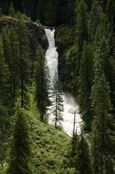 #Waterfall... Elk River, northcentral #Idaho Find more at www.visitnorthcentralidaho.org | VisitIdaho.org