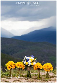maybe girls carry sunflowers (which will look AMAZING with their blue dresses) and yours is white daises, more blue and less yellow?