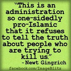 This is an administration so one-sidedly pro-Islamic that it refuses to tell the truth about people who are trying to kill us. ~ Newt Gingrich