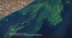 """USGS/NASA Earth Observatory image used in 2015 Visualizing Nutrients Challenge Winner submission """"A Resource Out of Place"""""""
