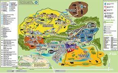 Adventure Cove Waterpark map Singapou Pinterest Maze Cove FC