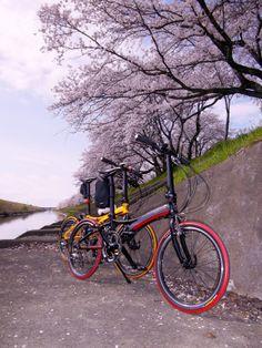 Copyright © SHINDY 様 / VISC. P20 2014年モデル / 今回お送りしました写真は、DAHONが大好きな仲間と岐阜県にあります一夜城(墨俣城)に桜を見にサイクリングした時の写真です。2人ともDAHONの気軽さやスタイリッシュさが大好きで、色々な場所へ沢山の発見と沢山のハッピーを求めてサイクリングを楽しんでま~す♪