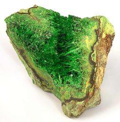 Cuprosklodowskite by Bruceski Minerals And Gemstones, Crystals Minerals, Rocks And Minerals, Stones And Crystals, Gem Stones, Natural Gemstones, Cool Rocks, Beautiful Rocks, Mineral Stone