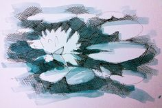 Create A Drawing A Day: Water lily