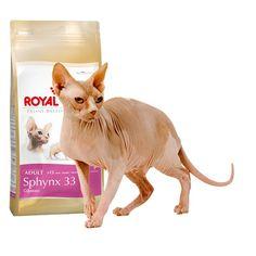 Alimento específico para #gato #Sphynx  #Maskokotas #RoyalCanin #gato #cat Sphynx 33 Royal Canin Maskokotas