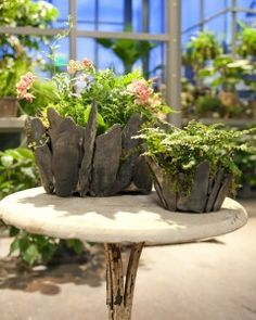 Decorative Planter DIY with Martha Stewart