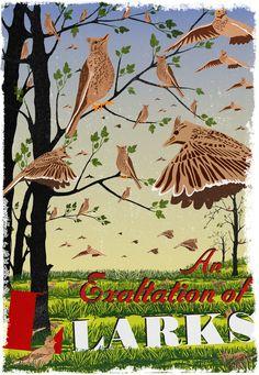 Woop lark poster