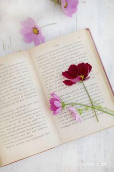 book Esas flores que una vez secas permanecen entre las hojas de los libros cada vez que las vemos nos llenan de perfumes lejanos y de recuerdos .
