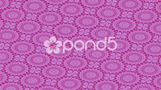 Floral pattern with quarterfoil - Stock Footage Stock Video, Stock Footage, Shots, Floral, Pattern, Flowers, Patterns, Model, Flower