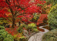 japanese garden at the butchart garden vancouver bc | ... › Portfolio › Japanese Garden in Butchart Gardens, BC, CANADA