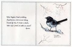 williewagtail - Google Search