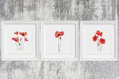 Modern Cross Stitch Pattern Watercolor Flowers Poppies Set 3 in 1 Poppy Modern Wall Art, Counted Chart Birthday Diy Gift Floral Embroidery