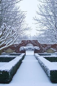 Garden in Winter Lush Garden, Green Garden, Christmas Wonderland, Winter Wonderland, Beautiful Gardens, Magical Gardens, Winter Garden, Winter Scenery, Traditional Landscape