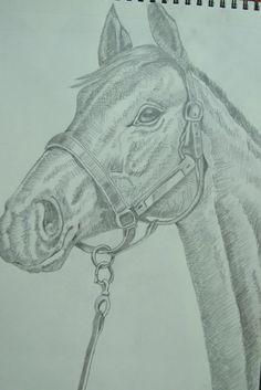 Pencil Sketch - Horse