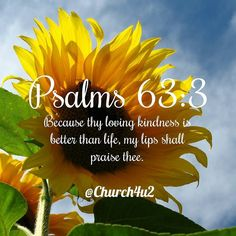 """Psalms 63-3 """"Because thy lovingkindness is better than life my lips shall praise thee."""" #KingJamesVersion #KingJamesBible #KJVBible #KJV #Bible #BibleVerse #BibleVerseImage #BibleVersePic #Verse #BibleVersePicture #Picture #Pic #Image #KJVBibleVerse #DailyBibleVerse"""