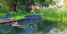 to go with our natural pool!!!!!