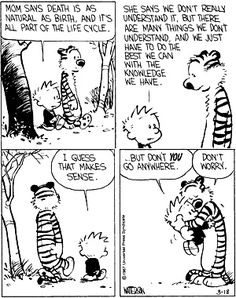 Calvin  Hobbes grapple with tragedy
