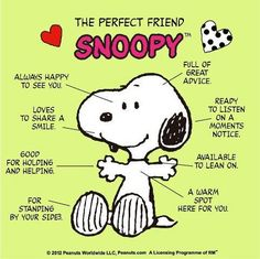 Resultat d'imatges de snoopy the perfect friend poster