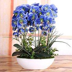 Nearly Natural Décor Artificial PU Phalaenopsis Flower Decorative, European Contracted Modern Flower Arrangement Art PU Flower Arrangement in Creative Ceramic Vase, Butterfly Orchid (Blue) * Click image for more details.