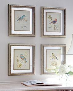 Four Songbird Prints