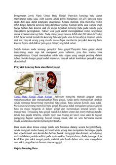 Pengobatan herbal untuk batu ginjal