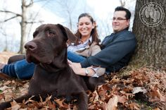 Like the owners sitting down behind dog petting it and the way the owners are slightly out of focus.