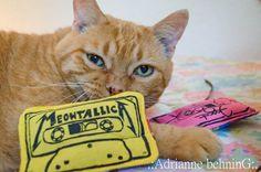 A fun cat toy!