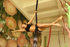 Aerial Silks, Fabrics, Aerial Yoga