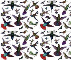 Vintage Hummingbirds fabric by peacefuldreams on Spoonflower - custom fabric