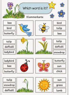 "Ideenreise: Klammerkarten zu ""Easter and spring"" English Activities For Kids, Learning English For Kids, English Worksheets For Kids, English Lessons For Kids, Kids English, English Reading, English Words, English Grammar, Teaching English"