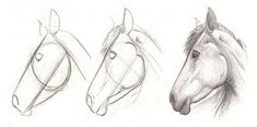 Wonderful Photos horse drawing tutorial Thoughts : Learn how to draw with these tutorials, which teach you to draw animals, people, flowers, landscapes and more. Drawing Lessons, Drawing Poses, Drawing Techniques, Painting & Drawing, Drawing Tips, Drawing Ideas, Basic Drawing, Pencil Painting, Drawing Drawing