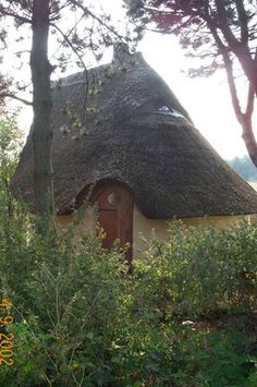 Little thatched roof structure