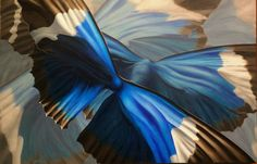 blue morpho butterfly abstract oil painting Rachel Steely realism Patterns in Flight