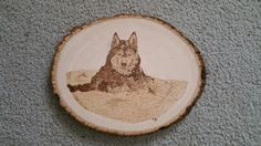Wood burning I did of my favorite dog Husky for a friend.