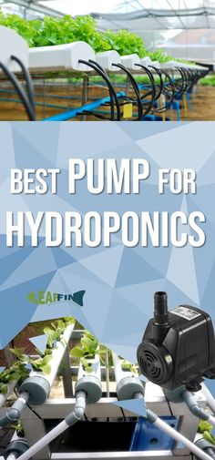 Guide to Water Pump Setup For Hydroponics How big of a water pump should I get is one of the most asked questions by new hydroponic growers. So there is no easy or set formula to go by for that. Let's take a look at our recommendations on which water Hydroponic Farming, Hydroponic Growing, Hydroponic Vegetables, Growing Plants, Aquaponics System, Hydroponics Setup, Vertical Hydroponics, Aquaponics Greenhouse, Aquaponics