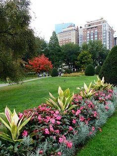 Jardín Público de Boston, Masachussets ...