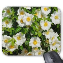 cherokee rose mouse pad