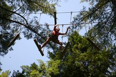 You'll never know what you can accomplish until you try. #OrlandoTreeTrek #Challenging