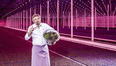 De tuinbouw is de basis van het oorspronkelijk menselijk dieet – Rob Baan