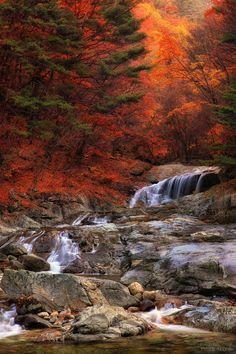 Backdam valley in Korea.
