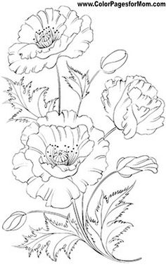 Embroidery patterns simple coloring pages 44 best Ideas Easy Coloring Pages, Flower Coloring Pages, Coloring Books, Floral Drawing, Drawing Flowers, Flower Sketches, Painting Patterns, Fabric Painting, Colorful Flowers