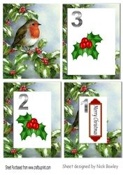 robin with snow   holly   berries tunnel pyramids on Craftsuprint - View Now!