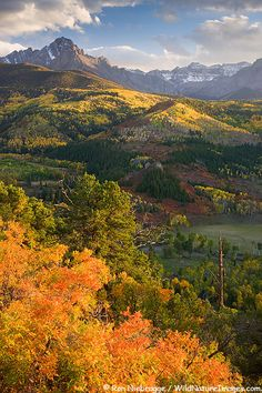 San Juan Mountains, Colorado (Photo: Ron Niebrugge, www.wildnatureimages.com)