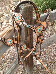Alamo Cheetah Headstall & Breast Collar!! Pppuuuuuhhhhllllleeeeeaaaasssseeee